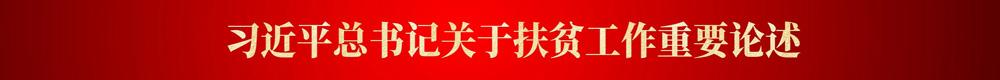 习近平总书记关于扶贫工作重要论述